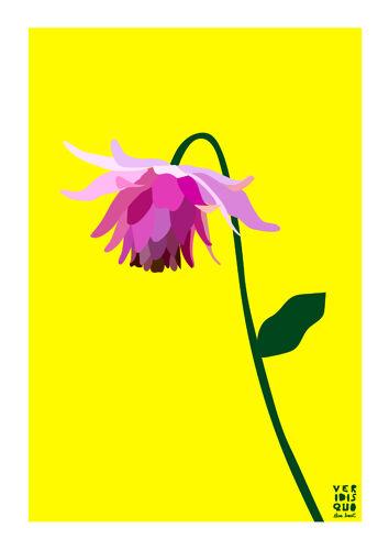 Naivasha - illustration en édition limitée, format a3 (veridis quo, elisa brouet)
