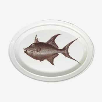 Plat ovale décor poisson