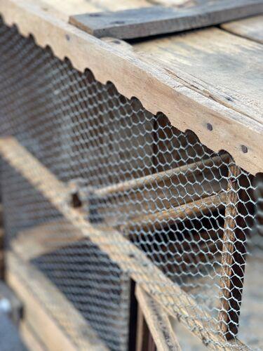 Cage volière ancienne oiseaux / pigeon art populaire bois 1900'