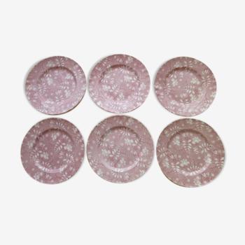 Set de 6 assiettes à dessert Royal Tudor modèle Velvet