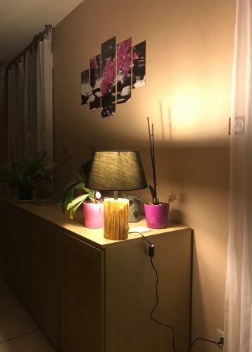 Lampe en bois d'IF