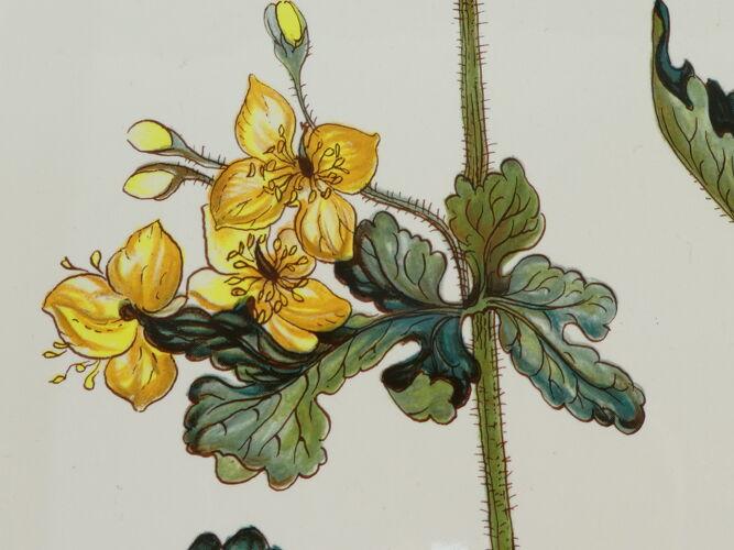 Plat ovale Villeroy et Boch modele botanica