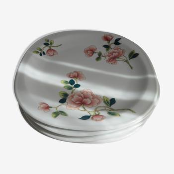 Assiettes en porcelaine de limoges à décor floral