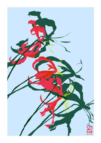 Illustration Superba en édition limitée, format A4 Elisa Brouet