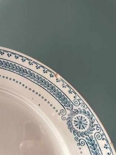 Lot de 5 assiettes plates collection Carina U&C Sarreguemines