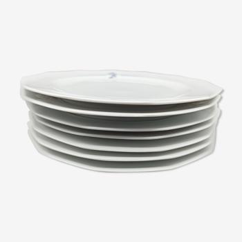 7 assiettes plates Winterling Kirchenlamitz - Véroniques