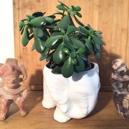 Cache pot zoomorphe éléphant en porcelaine
