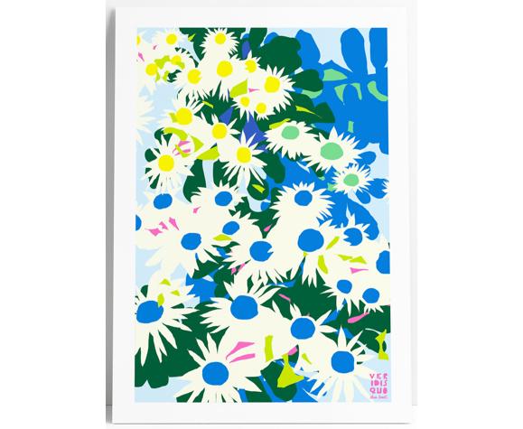 Echinacea  - illustration en édition limitée, format a4 (veridis quo, elisa brouet)