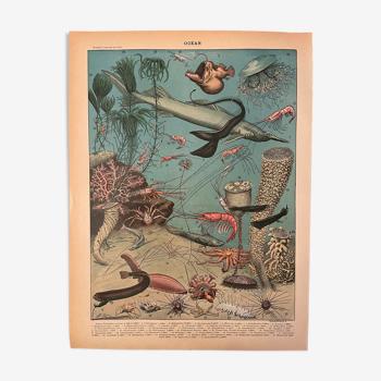 Lithographie gravure océan de 1897
