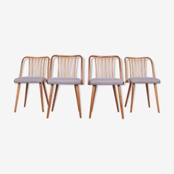 Ensemble de 4 chaises de salle à manger par Antonin Suman pour Ton, années 1960