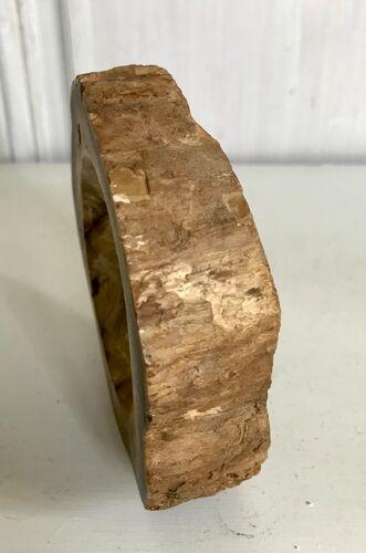 Cendrier en bois pétrifié