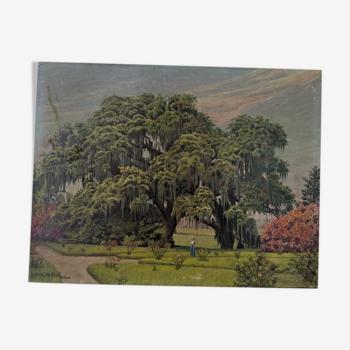 Peinture à l'huile sur carton J.Ryck