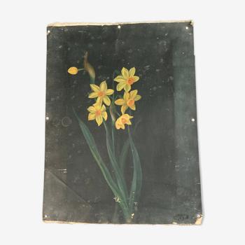 Peinture bouquet de narcisses
