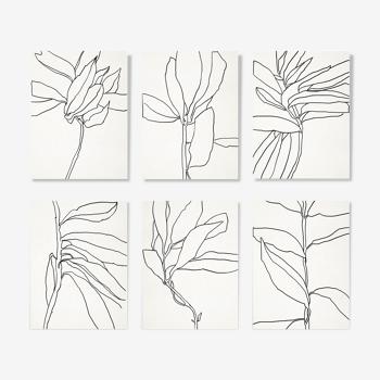Ensemble de 6 illustrations, série botanique