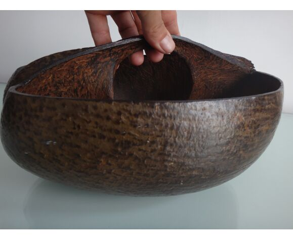 Corbeille coco fesse Seychelles
