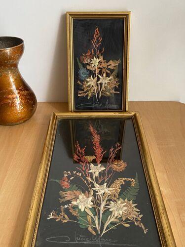 Lot de 2  cadres fleurs séchées avec edelweiss signés