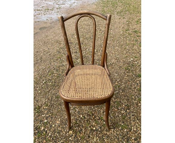 Set 6 chaises thonet