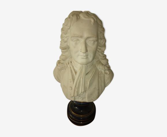 Buste en biscuits Newton