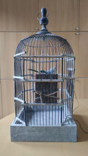 Cage à oiseaux
