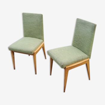 Paire de chaises des années 50 en hêtre teinté sycomore