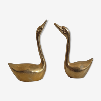 Duo brass swans
