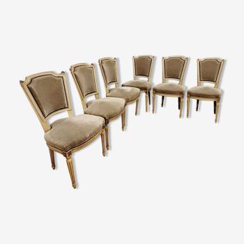 Lot de 6 chaises Louis XVI