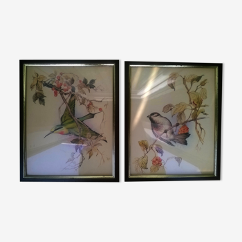 """Paire de gravures """"aux oiseaux"""""""