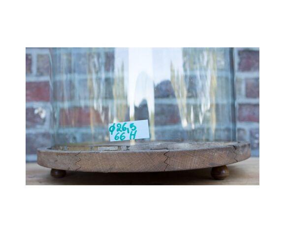 Cloche en verre vintage