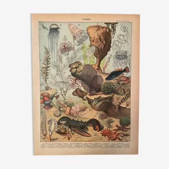 Lithographie gravure océan (2) de 1897