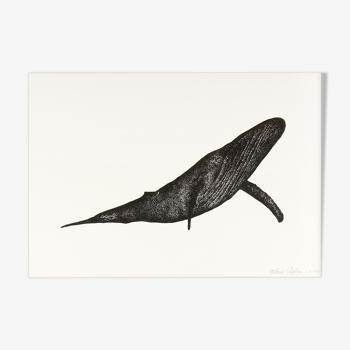 Carmen la baleine, risographie A4