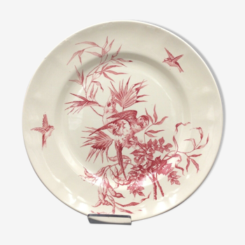 Ancienne assiette longchamp congo perroquet
