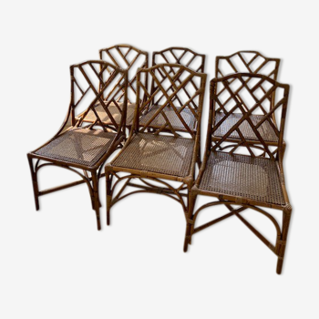 Serie 6 chaises bambou