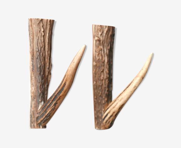 Paire de patères, bois de chevreuil, années 50