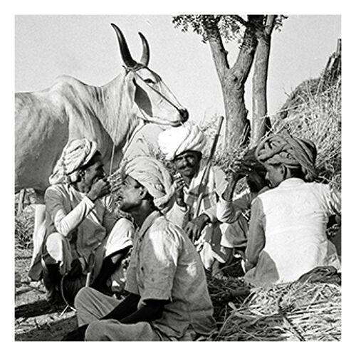 Photographie Éleveurs s'offrant une pause, Rajasthan