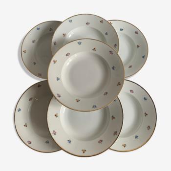 7 assiettes en porcelaine allemande