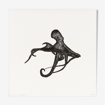 Luce l'octopus, Risographie