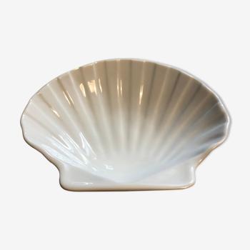 Seashell Cup