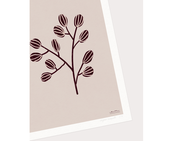 "Illustration ""Herbier moderne"" #3"